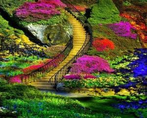 escada flores