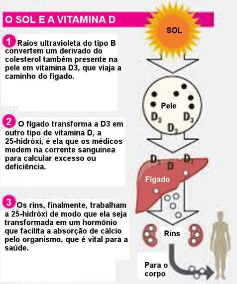 Resultado de imagem para imagens sobre livros sobre vitamina d