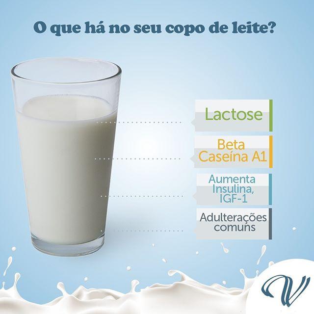 Resultado de imagem para riscos do leite de vaca segundo vegetarianos